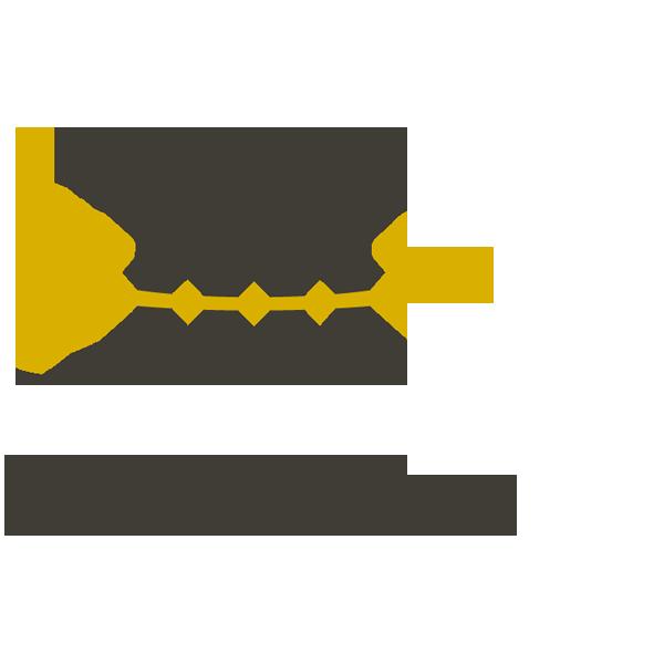 logo_d1law