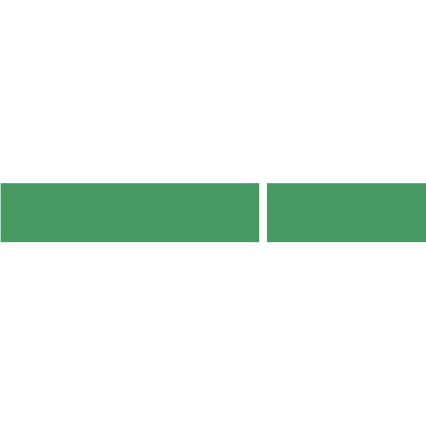 logo_flovel_sports