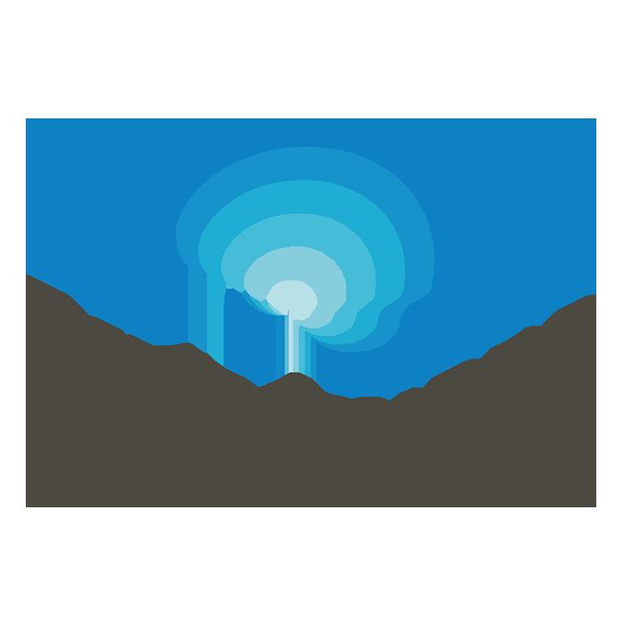 logo_Brain/MINDS